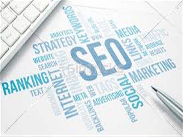 I will do Search Engine Optimization for your onsite  or blog.