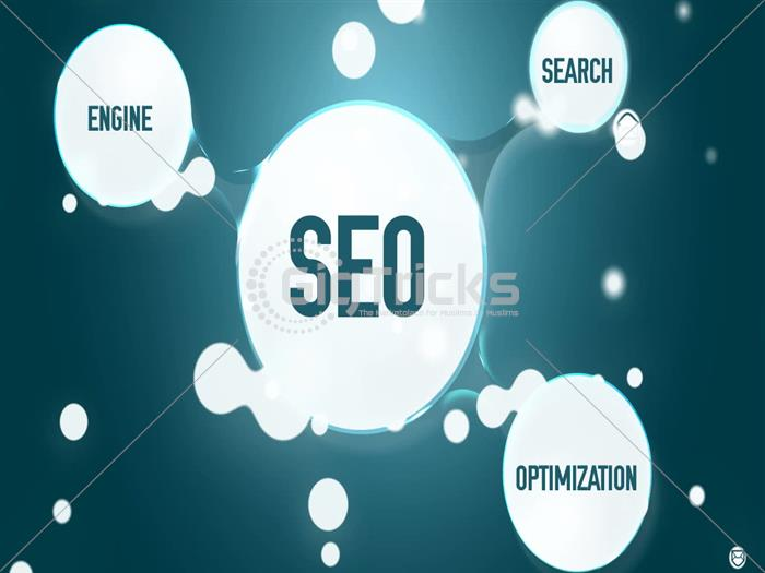 I Will Write Complete SEO Website Content