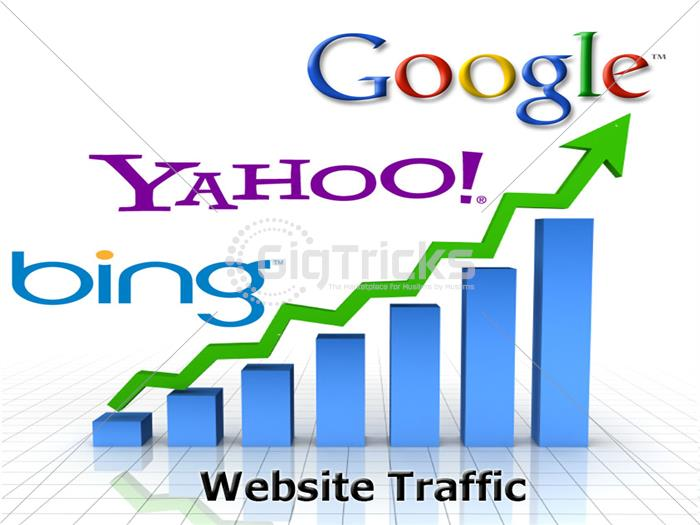 I Will Do Heavy Traffic For You Business For 30 Days