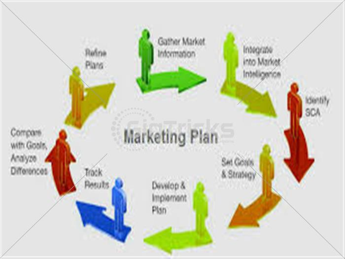 I Will make Market Strategy To Grow Your Business