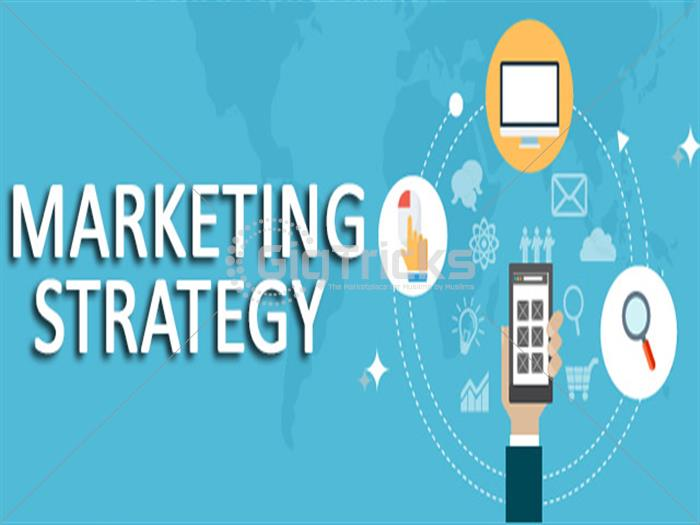 I Will Make A Marketing Strategy For You