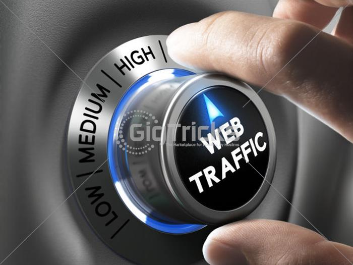 I Will Provide Targeted Web Traffic