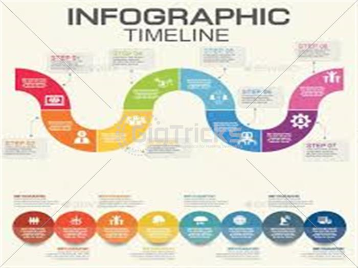 i will design professional infographic