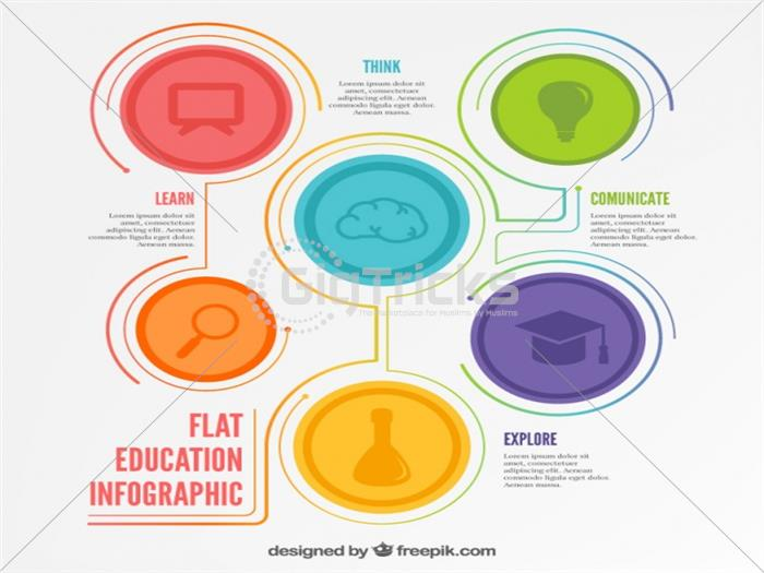 I Will Design Eye Catching Infographic For You